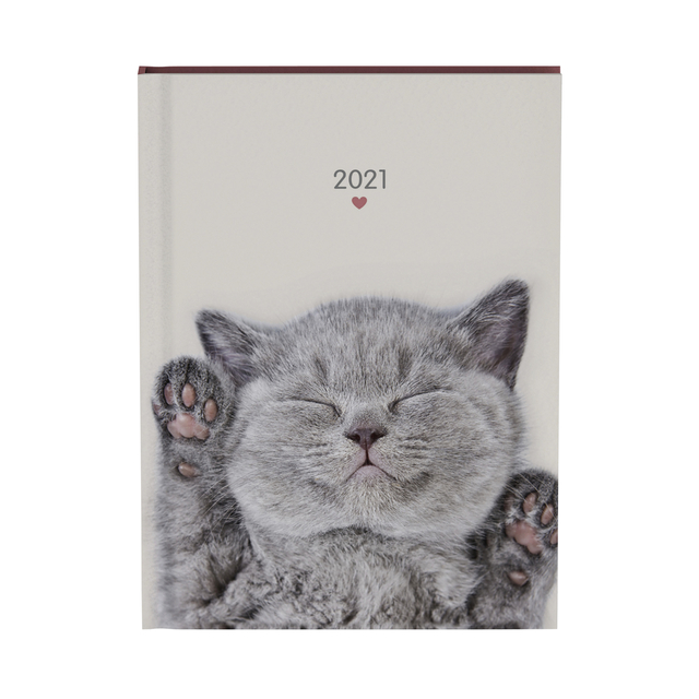 Agenda 2021 my favourite friends cats